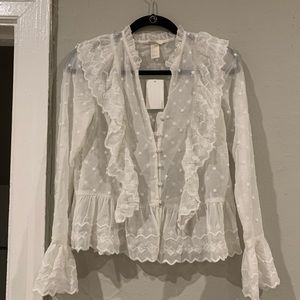 H&M Sheer Button-Down Blouse